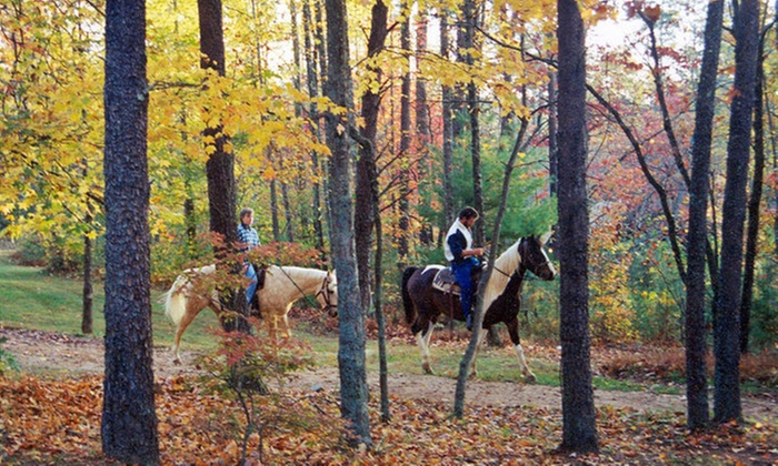 Gold City Corral & Carriage Co - Dahlonega: Two-Hour Horseback Trail Experience for One, Two, or Four with Picnic at Gold City Corral & Carriage Co (52% Off)