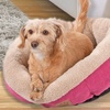 SnooZZy Mod Chic Fuchsia-Rose Round Pet Bed