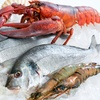26% Off Lobster and Seafood