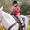 Up to 69% Off Horseback-Riding Lessons