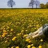 61% Off Allergy-Symptom Treatment