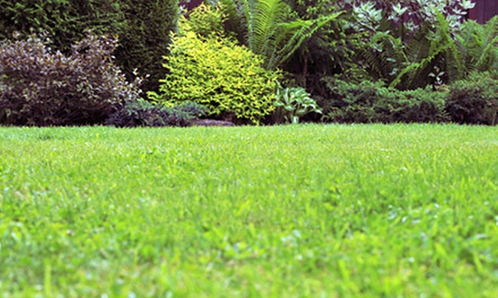 Perkins Lawn Services - Hendersonville: Four or Eight Weekly Lawn-Care Sessions for Yards Up to 7,500 Square Feet from Perkins Lawn Services (Up to 73% Off)