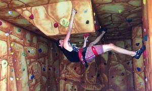 Fun City Sunshine: Two-Hour Indoor Rock Climbing for One ($12), Two ($20) or Four ($35) at Fun City Sunshine (Up to $168 Value)