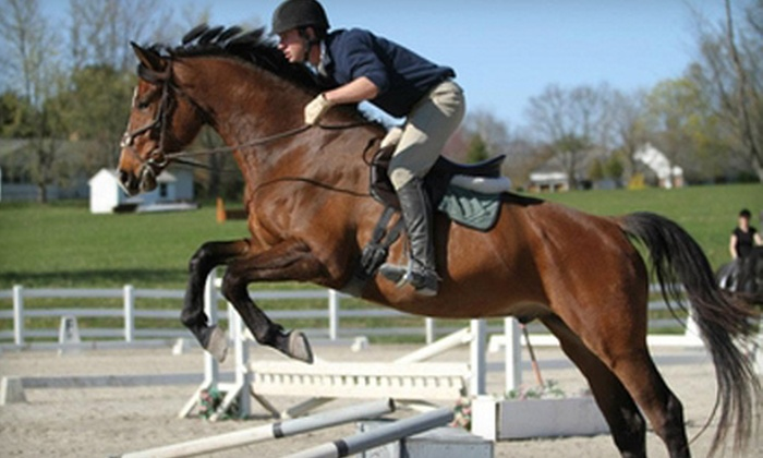 Bow Brickhill Stables - Holland: Two or Four 60-Minute English-Style Group Horseback-Riding Lessons at Bow Brickhill Stables (Up to 64% Off)