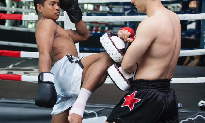 Wu Xing Do Martial Arts & Fitness - Pleasanton: $19 for $75 Worth of Muay Thai and Kick Boxing Lessons — Wu Xing Do Martial Arts & Fitness