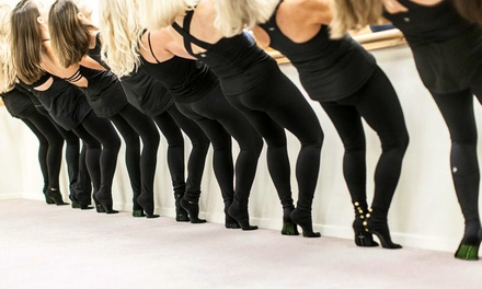 Two Weeks of Unlimited Barre Classes or Five Classes at Barre Evolution (Up to 48% Off)