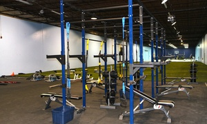 Tampa Elite Strength And Conditioning: One-Month Membership with a Personal-Training Session at Tampa Elite Strength and Conditioning (65% Off)