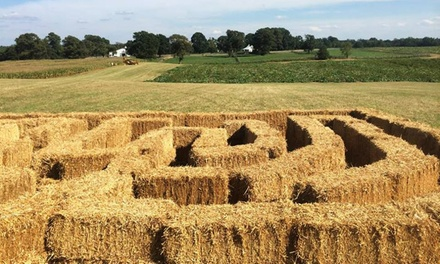 $14 for Fall Family Experience Package for Four at Lloyd Family Farms ($20 Value)