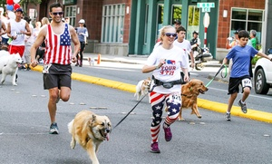 Bellevue Downtown Association: One, Two, or Four Entries for Bellevue Four on the 4th Dog Jog & Walk presented by BECU (Up to 54% Off)