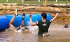 Hero Mud Run - Muskegon: Entry for One, Two or Four to the Hero Mud Run on May 6, 2017 (Up to 40% Off)