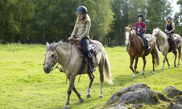 3H Stables - Huntsville: One-Hour Horseback Trail Ride for One or Two at 3H Stables (50% Off)