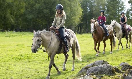 Paseo a caballo con pícnic para dos o cuatro personas desde 34,90 € en Los Ciruelos