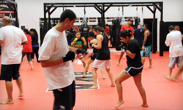 American Kickboxing Academy (AKA) - Multiple Locations: 10 or 20 Drop-In Classes at American Kickboxing Academy (AKA) (Up to 88% Off)