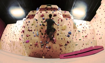 One-Month Climbing Membership with Equipment for One or Two at Iron Palm Bouldering (Up to 51% Off)