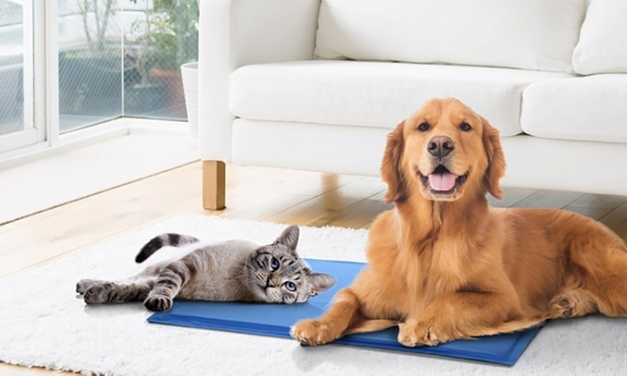 Bdirect: $25 for a Large Pet Cooling Mat (Don't Pay $69)