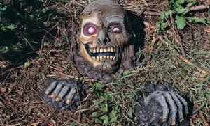 Haunted Halloween Lawn Decor: Haunted Halloween Lawn Decor