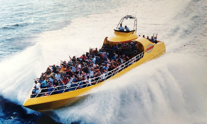 Cyclone Speedboat Tours - Ocean City: One-Hour High-Speed Boat Tour and Dolphin Watch for Two or Four at Cyclone Speedboat Tours (38% Off)