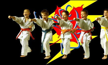 Up to 89% Off Kids Martial Arts Classes at Lightning Family Martial Arts