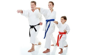 Goju Ryu Karate & Yoga Center: [Up to 70% off] Up to 20 Sessions of Karate starting from AED 79 at Goju Ryu Karate & Yoga Center, Dubai
