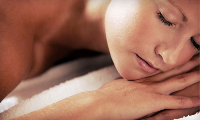 Amnesia Salon and Spa - Las Vegas: Hydrating Facial, Backcial Fire and Ice Deep Tissue Massage, or Both with Part of the Proceeds Benefitting the Humane Society at Amnesia Salon and Spa in North Las Vegas (Up to 65% Off)