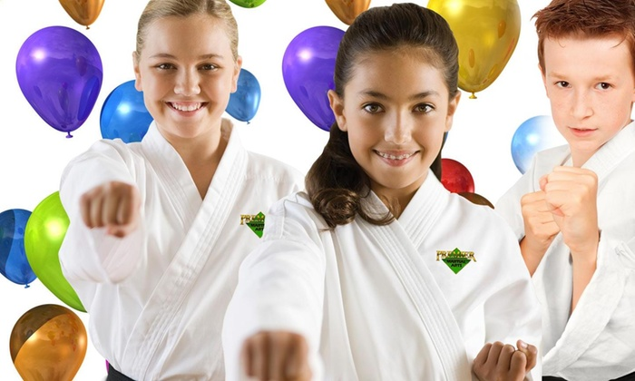 Premier Martial Arts - Knoxville: $99 for a Karate-Themed Birthday Party ($241 value)
