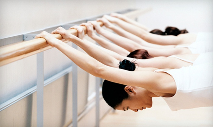 The Physical Fitness Center - Garden City South: Three or Five Barre Pilates Classes at The Physical Fitness Center (Up to 61% Off)