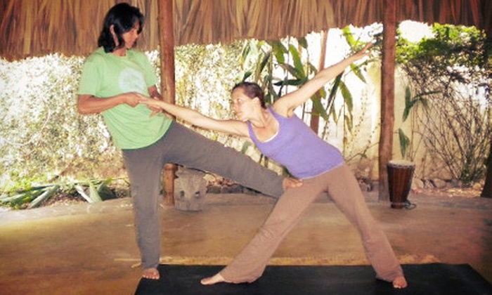 Zen Den Yoga School - Zen Den Yoga School and Studio: 10 or 20 Classes at Zen Den Yoga School (Up to 83% Off)
