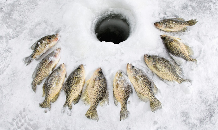 Ice Fish Simcoe - Barrie: C$89 for a Four-Hour Ice-Fishing Experience at Ice Fish Simcoe (C$300 Value)