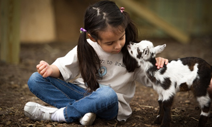Old McMicky's Farm - Odessa: $10 for Admission Package for One Adult and Child with Interactive Zoo and Tour at Old McMicky's Farm (Up to $20 Value)