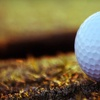 Up to 60% Off Golf Practice at The Range on Oak Grove
