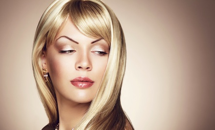 Haircut and Blow-Dry with Condition, All-Over Color, or Partial Highlights at Anthony David Salon (Up to 51% Off)