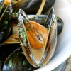 Half Off at Prime Catch Seafood Bar & Lounge