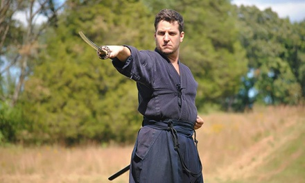 Swordsmanship Class Packages at Sword Class NYC (Up to 67% Off). Five Options Available.