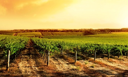 Wine Tasting and Vineyard Tour for Two or Four at Jules J. Berta Vineyards (Up to 53% Off)