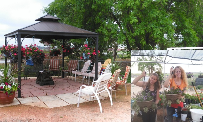 Jan's Jungle - Erie-Frederick: Up to 55% Off Planting Party at Jan's Jungle