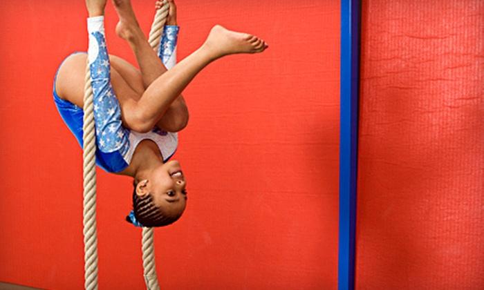The Flip Zone - Plainfield: 5 or 10 Kids' Open Gymnastics Sessions at The Flip Zone in Plainfield (Up to 77% Off)