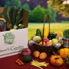 Half Off Delivered Box of Organic Produce