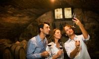 Visite privilège des caves avec dégustation et 2 bouteilles pour 2 personnes à 19,90 € avec Sauvion Château du Cleray