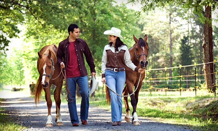Douglas Lakeview Stables - Mcmillan: One Trail Ride for Two or Four at Douglas Lakeview Stables (Up to 52% Off)
