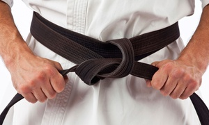 TriValley ATA Martial Arts: One or Two Months of Martial-Arts Classes for Kids or Adults at TriValley ATA Martial Arts (Up to 76% Off)