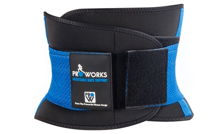 Proworks Back Support Belt in Choice of Size