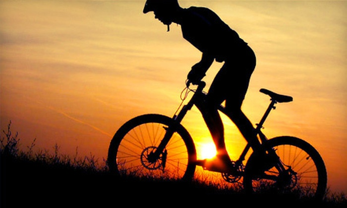 GO Mountain Biking! - Moreau: Mountain-Biking Tour for Two or Four at GO Mountain Biking! in Gansevoort (Up to 66% Off)