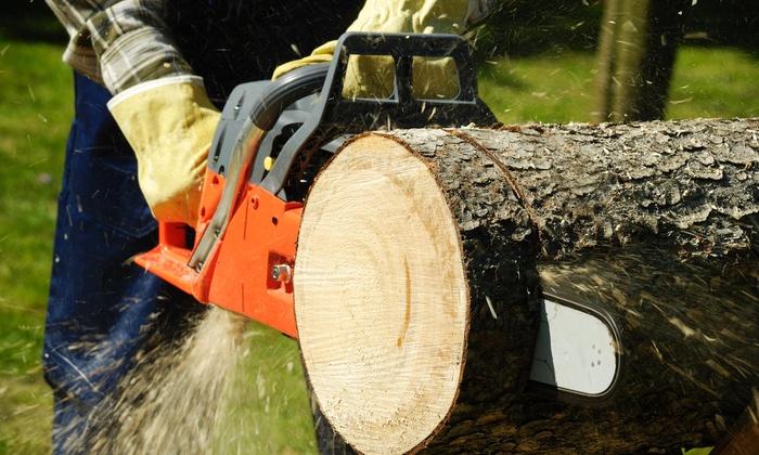 Avetera Lawn Care LLC - San Antonio: $178 for $330 Worth of Tree-Trimming Services — Avetera Lawn Care LLC