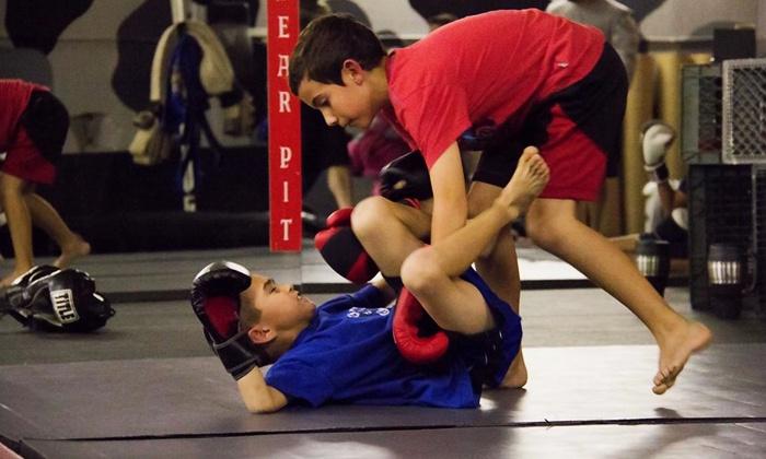 MMA Martial Arts