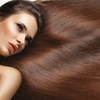 45% Off Haircut, Area Highlight, and Style