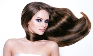 Shahla at Jerry's Hair Salon : Haircut, Smoothing, and Highlights at with Shahla at Jerry's Hair Salon (Up to 62% Off). Five Options Available.