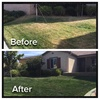 Green With Envy Lawn Painting: Up to 45% Off Lawn and Garden Care at Green With Envy Lawn Painting