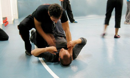 5, 10, or 12 Classes with T-Shirts and Hand Wraps at Krav Maga Institute (Up to 73% Off)