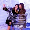 Up to 43% Off Arctic-Themed-Bar Admssion at Icebar