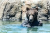 Up to 40% Off Zoo Admission at Oakland Zoo